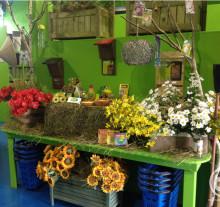 Varese-Gardening_estate4