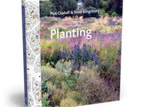 planting3